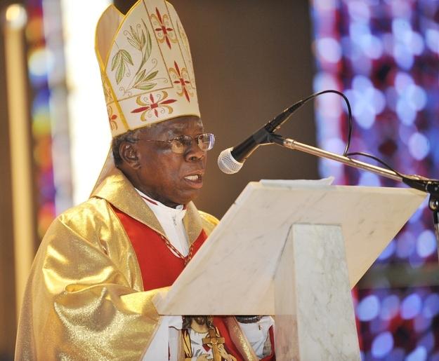 allthechildrenoflight-Cardinal-Francis-Arinze